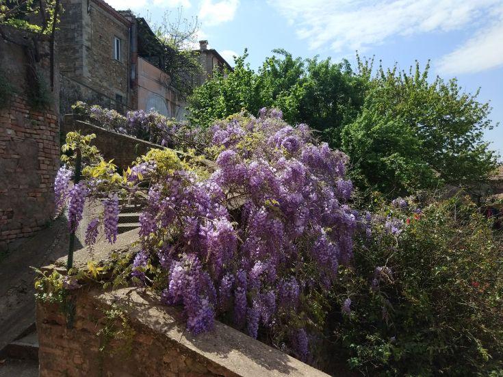 "Casa ""Le tre Muse"" - vista giardino"