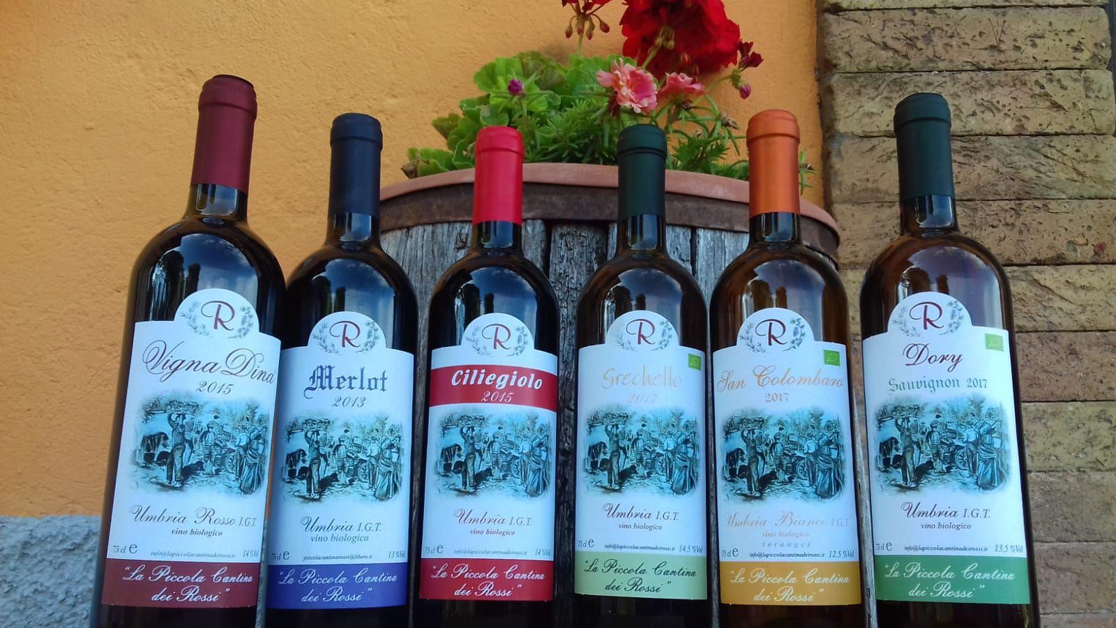 Grande offerta d'estate alla Piccola Cantina Rossi: 6 bottiglie di vino Bio-Naturale con il 30% di sconto