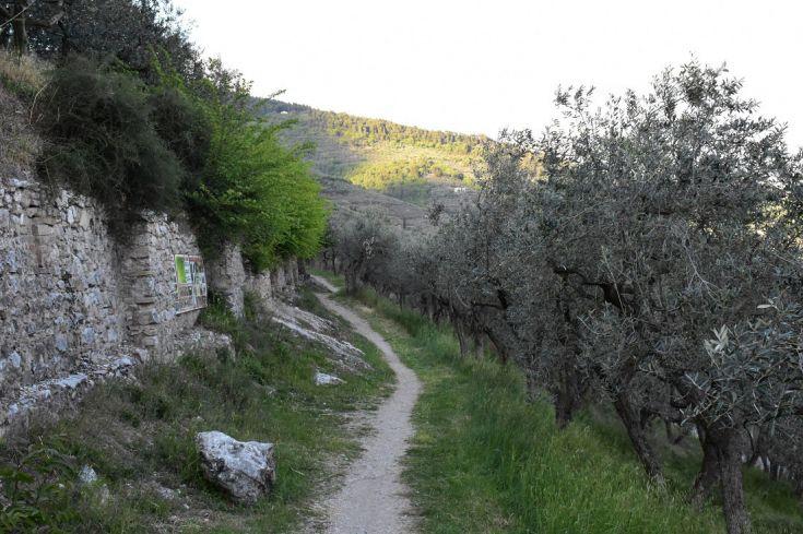 Camminata lungo le mura