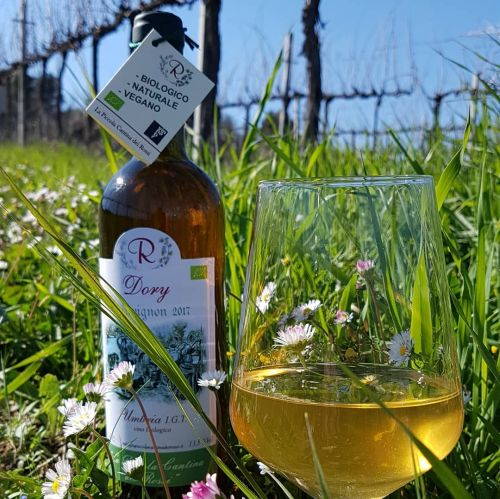 Degustazione vini Bio-Naturali alla Piccola Cantina Rossi